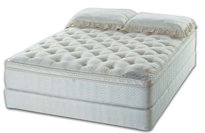 New Madison Euro with memory foam option